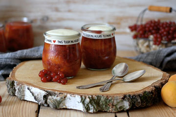 Aprikosen-Beeren-Grütze mit Vanillesauce