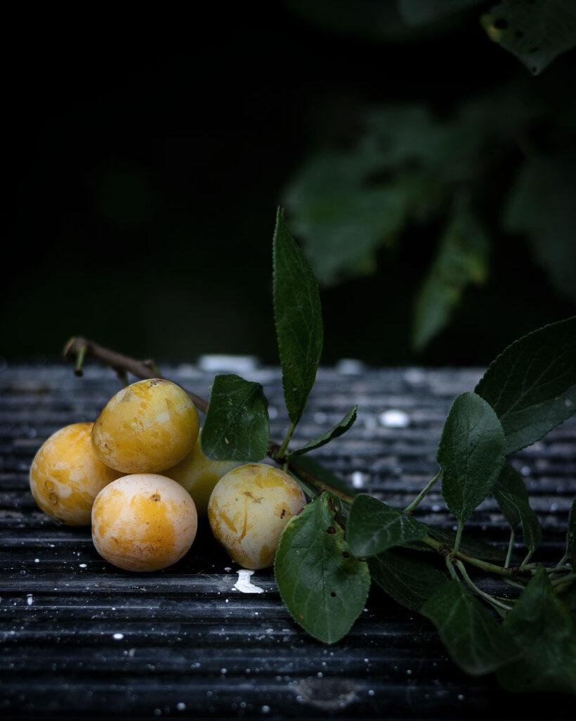 Süß, saftig und das Highlight im Spätsommer: Mirabellen sind ein ganz besonderes Steinobst